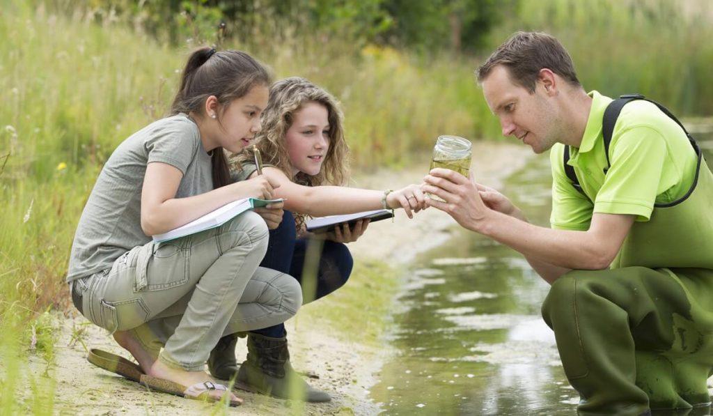 Beneficios de la educación ambiental