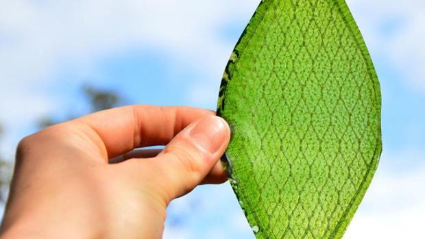 Descubren un nuevo método que convierte la luz solar en combustible