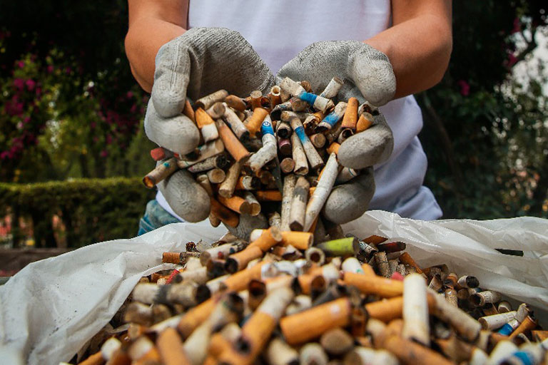 Leopoldo Benítez, Mexicano produce celulosa a partir de colillas de cigarro